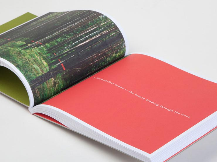 Common Language, Punctuating the Landscape. Box, book and Music CD design. Collaboration with artists Rachelle Thieves and Suzi Davidoff